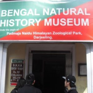 bengal-natural-history-museum-in-darjeeling-on-mirchi-travels