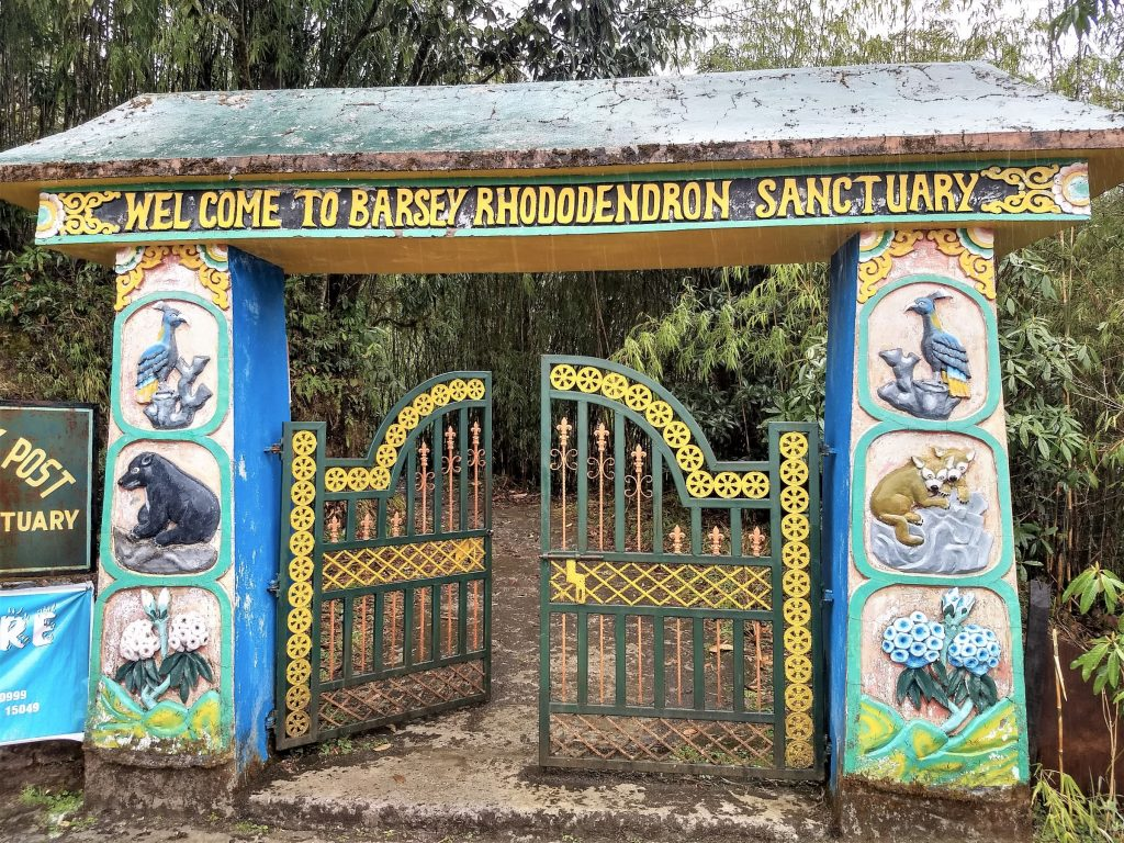 welcome to barsey rhododendron sanctuary