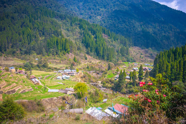 exquisite valley at sandakphu